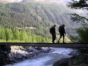 Nordic Walking sulle Alpi