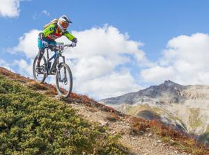Downhill sulle Alpi a Livigno